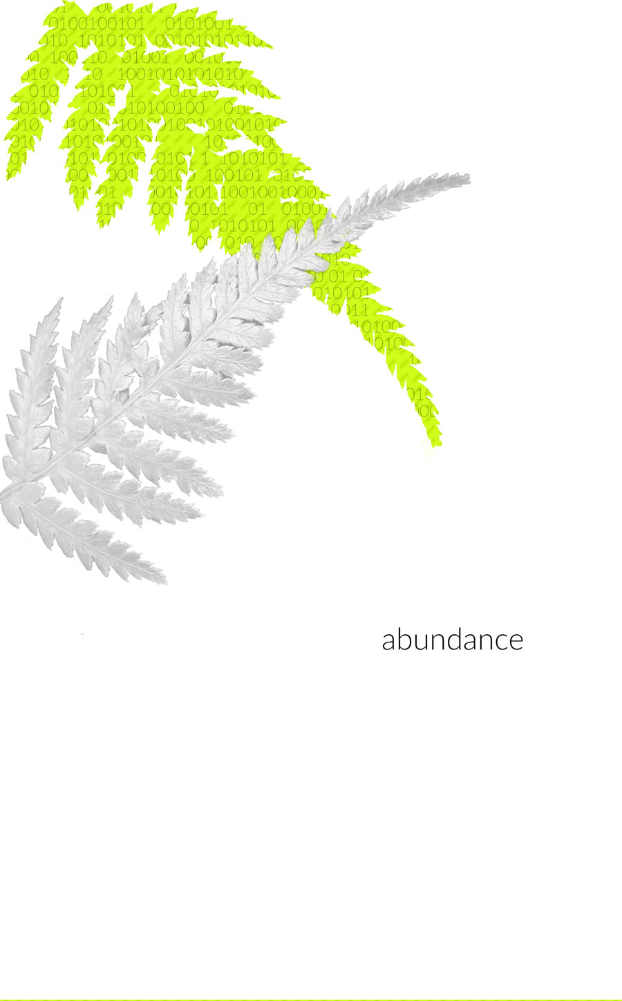 "The Turnip Truck(s) ""Abundance"" cover. Issue 4."